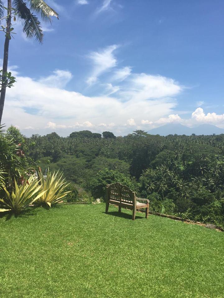 ubud-travel-sayan-terrace-villa-regenwald