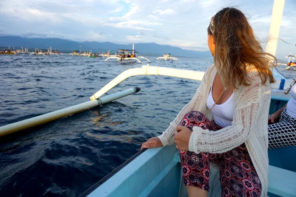 Sechs Uhr morgens Delfine gucken