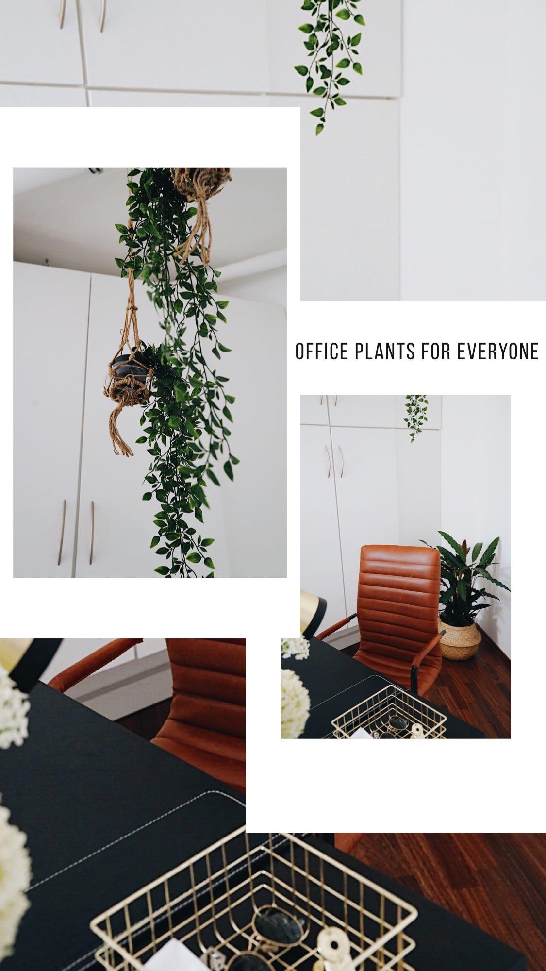Dekoration Arbeitszimmer Office Inspiration Style Lifestyleblogger Iterior  Wohnideen Home24 Ffranzy Fashionforffranzy Girlboss