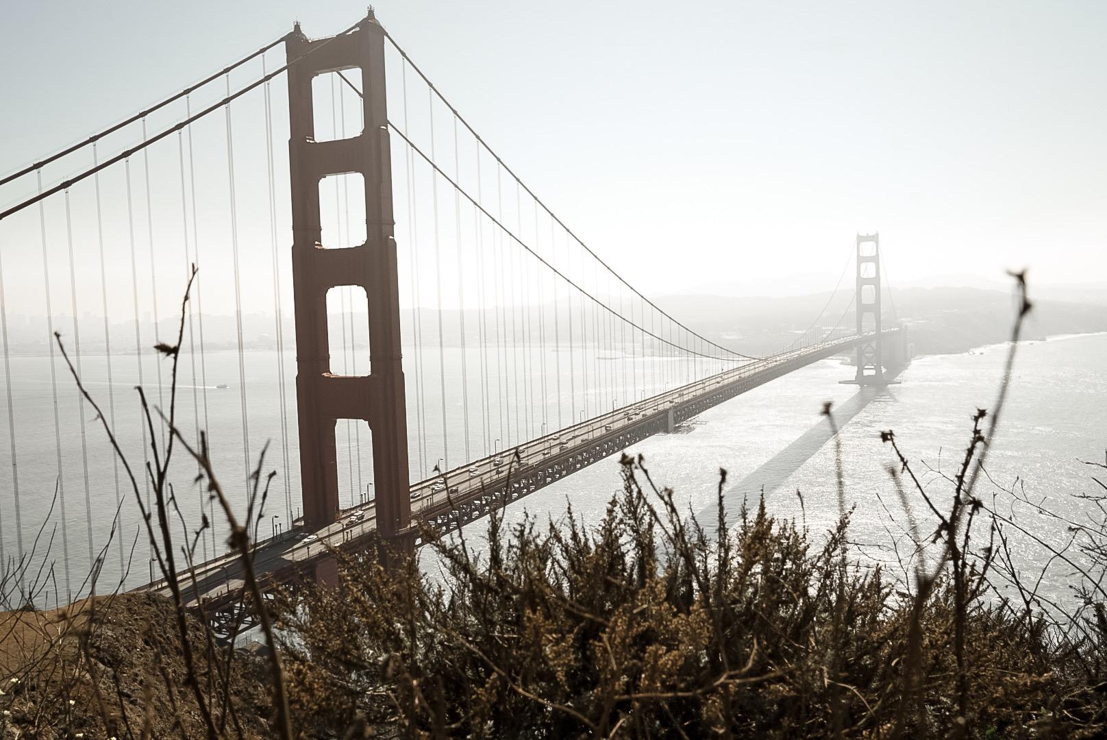 günstigster Preis San Francisco die beste Einstellung